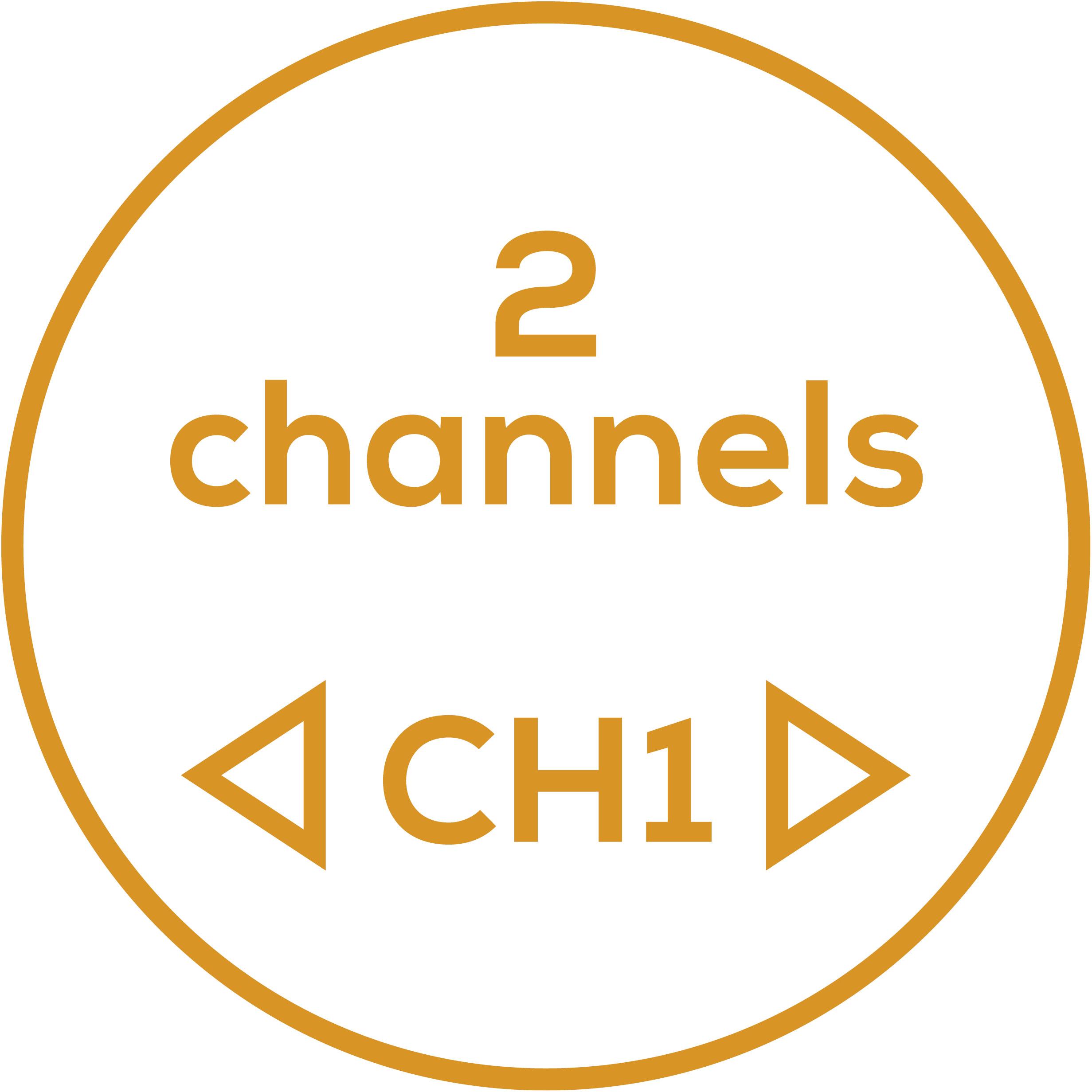 2 канала 2 отдельно настраиваемых канала