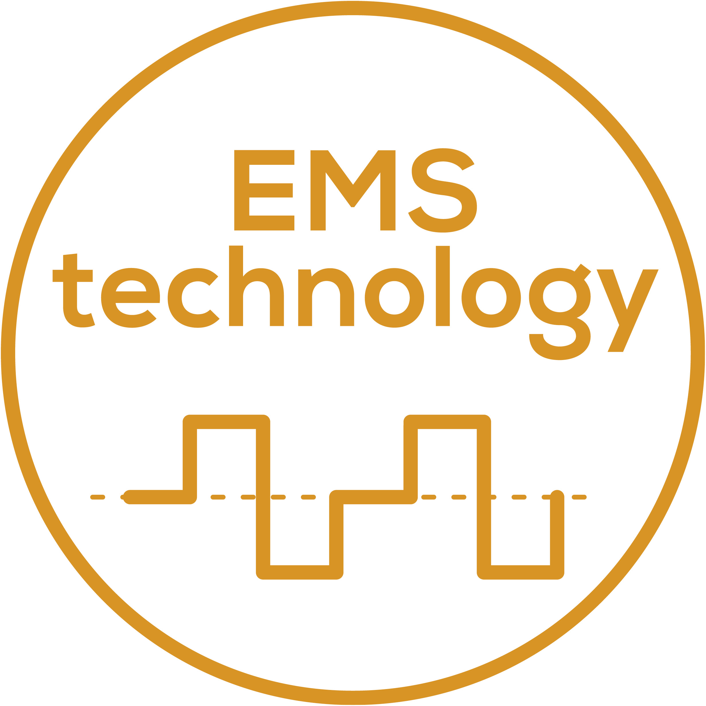 EMS technology Electrical muscle stimulation for muscle training and regeneration