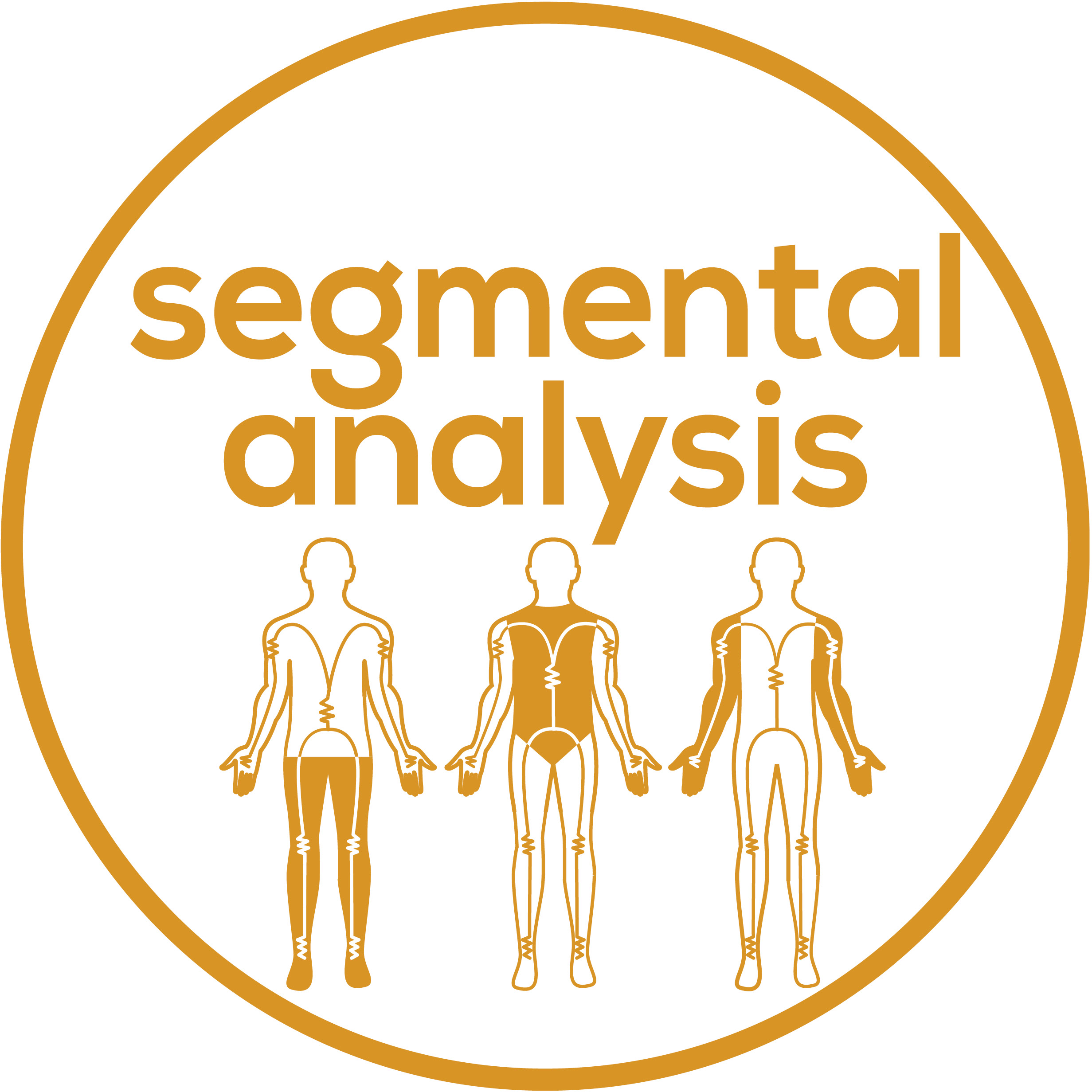 Segmental analysis for precise monitoring – even of individual areas of the body